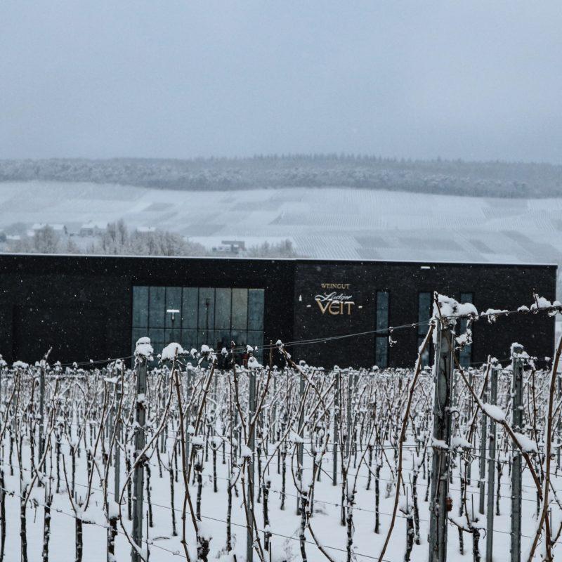 Moderne Dachdeckung bei Weingut Ludger Veit